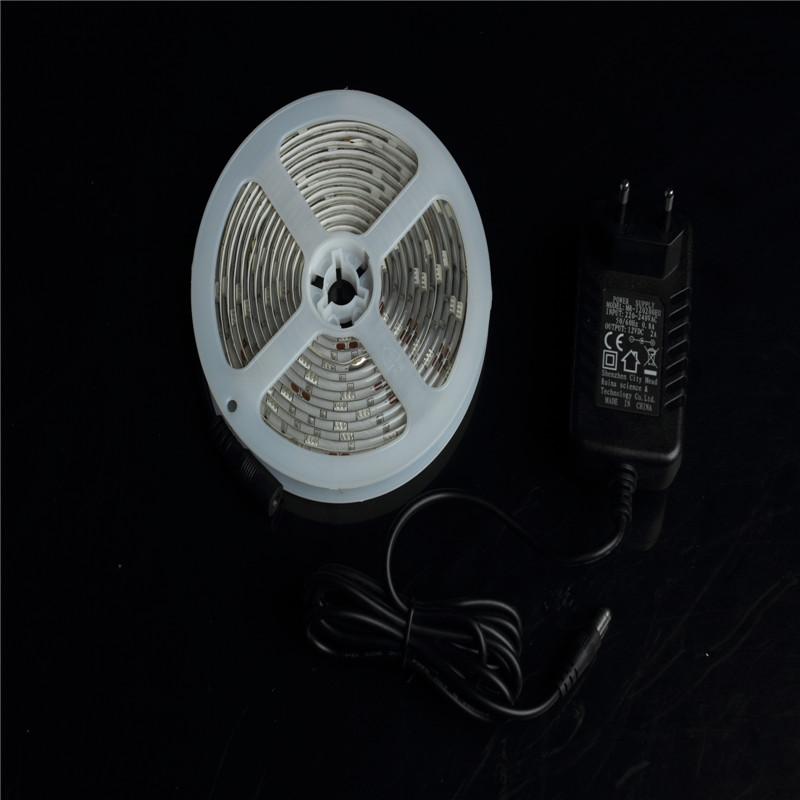 5050 W/R/Y/B/G Led strip light DC12V 24V