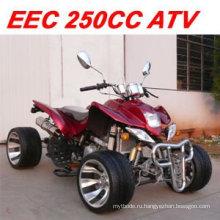 EEC 250CC ATV QUAD (MC-365)