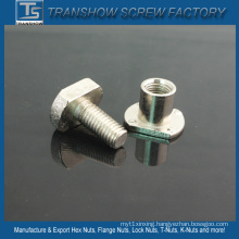Nickle Coated T Head Bolt Nut