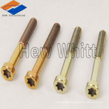 high strength GR5 torx titanium screw
