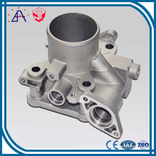 Customized Made Aluminum Material High Quality Die Casting (SY1207)