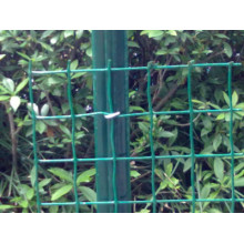 Holand Wire Mesh PVC