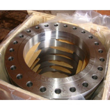 Ring Forged Big Size Flanges