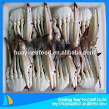 Tout type congelé moitié coupé bleu natation crabe haute qualité