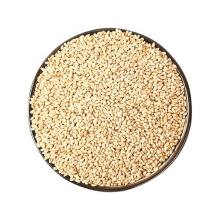 Graines de Quinoa Blanc Bio