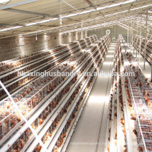 Chicken Use and A type battery cage for Nigeria