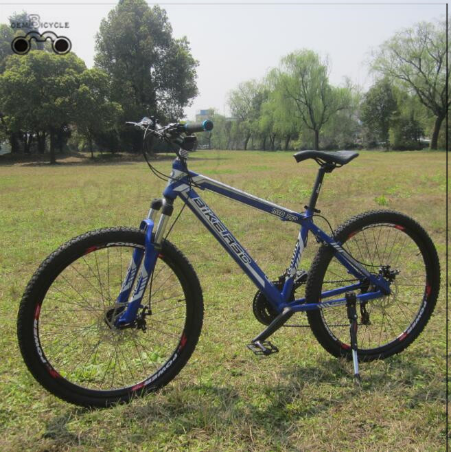 Mountain Bikes Blue