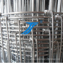 Ts-Hot-Dipped Galvanized Ranch Fence