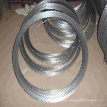 450mm/730mm/980mm Razor Wire / Galvanized Razor Barbed Wire