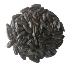 wholesale 2019 crop black sunflower seeds with Shell inner mongolia factory chinese