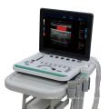 C5Pre Portable Laptop Color Doppler Ultrasound Machine