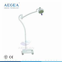 Mobile floor standing patient examination surgical light with wheels