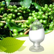 Suministro de ácido clorogénico puro Extracto de grano de café verde