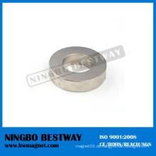 Starker radial magnetisierter Ring-Magnet Hersteller