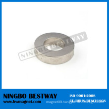 Strong Radial Magnetized Ring Magnet Manufacturer