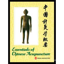 Das Buch Grundlagen der chinesischen Akupunktur (V-3)