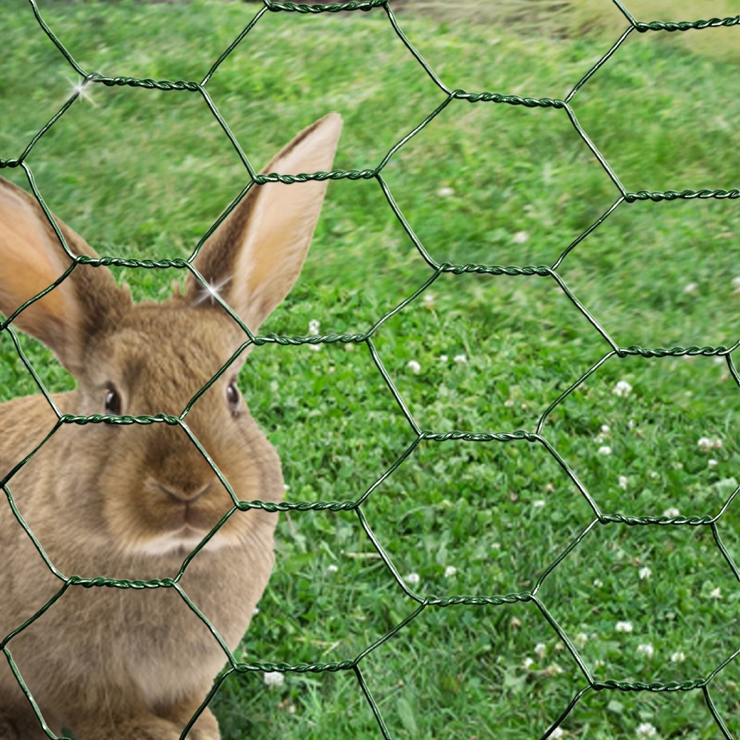 chicken wire mesh animal fence green-pvc