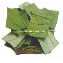 Feuille de thé à fleurs de lotus séché
