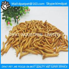 Comida de aves alta proteína deshidratada gusanos de la harina