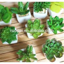 Plantas suculentas artificiales al por mayor de alta calidad