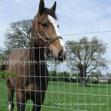 Cerca del caballo de bisagra tejida de acero galvanizado de 5 pies
