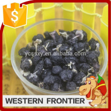 2016 Hot sale organic cultivation type black goji berry