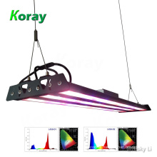LED Grow Light Full Spectrum Far Red for Blooming and Flowering Better than COB HID Grow Lights