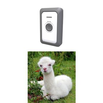 smart pet tracker