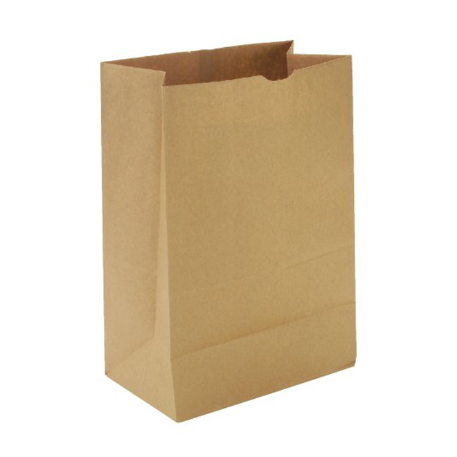 kraft storage bag