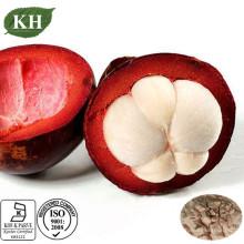 Extrait nutritif de mangoustan pour le traitement de la douleur abdominale