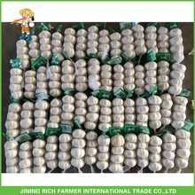 Super Quality Chinese Fresh Pure White Garlic 4.5CM