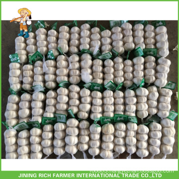 Super Quality Chinese Fresh Pure White Garlic 4.5CM