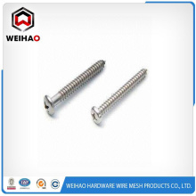 Pan head self drilling screw popular in Asia