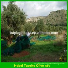 olive tree harvest net