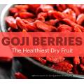 Оптовая сушеные дикие ягоды Годжи оптом Нинся