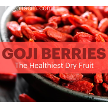 Baies de Goji chinois-Anti-vieillissement Superfood