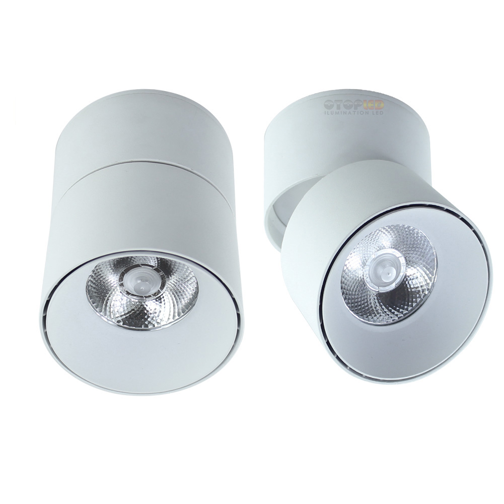 Surface Mounted Downlight 15W