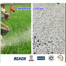 Sulfate d'ammonium (20,5% d'azote) pour engrais NPK