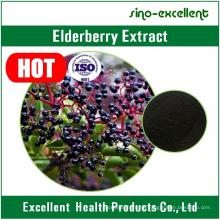 Extracto de baya de saúco con certificado ISO