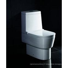 Toilette de salle de bains australienne Watermark d'une seule pièce (WA332P / SB3320)