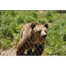 Malla del zoológico de la alta calidad del precio bajo (con ISO9001 y SGS)