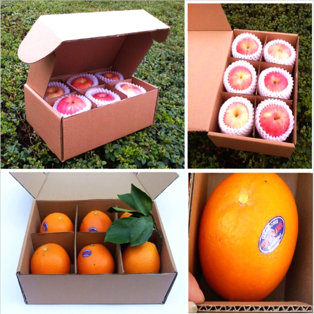 Corrugated Paper Fruit Packing Box