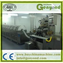 Máquina de encapsulamento de Softgel de venda quente (GYWJ-100II)