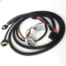 Customized Electric wiring harness