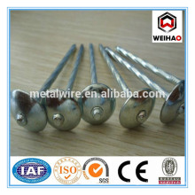 Widely use twist shank roofing nails g8-g12
