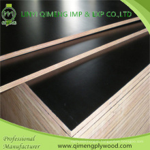 Professional Exporting Construction Grade Black Color 18mm Film Faced Plywood