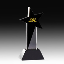 Shiny Crystal Star Award