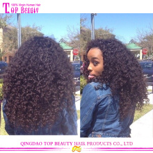 High quality 5a grade afro curly brazilian expensive human hair wigs