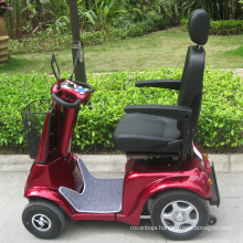 Four Wheel Folding Mobility Electric Scooter with 800W Motor (DL24800-3)