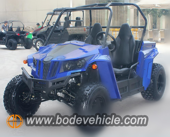 150cc buggy for kids